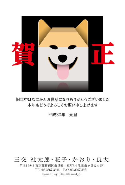 CAt_038.jpg