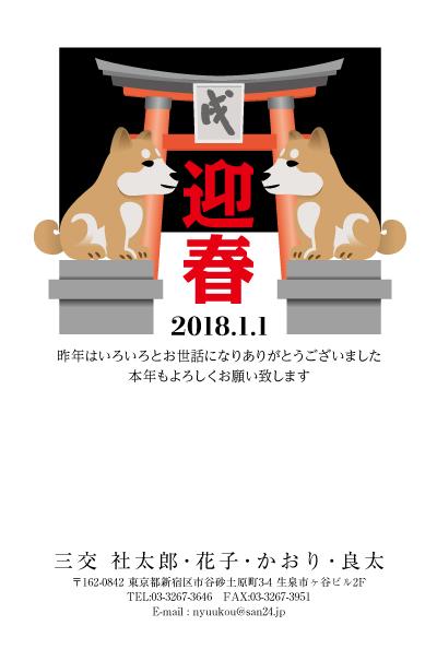 CAt_091.jpg