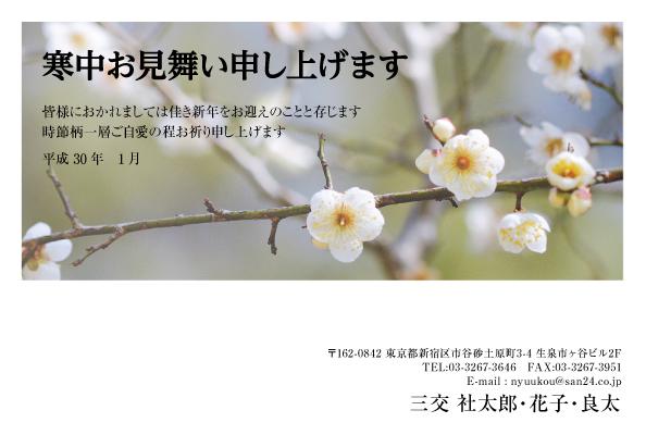KANy_001.jpg