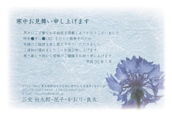 KANy_006.jpg