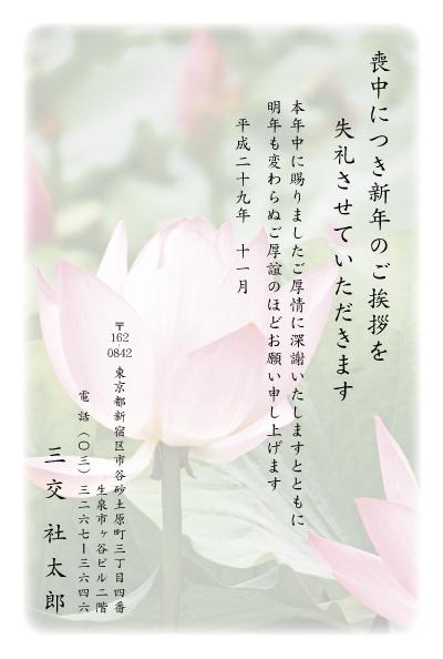 MOt_019.jpg